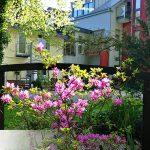 dieses Foto zeigt das Aparthotel Kottenforst im Frühling
